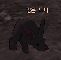 Picture of Black Rabbit