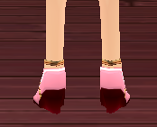 Equipped  Witch Scathach Shoes viewed from the back