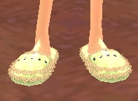 Slippers Equipped Front.png