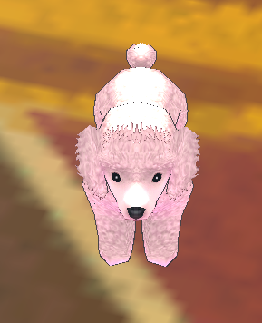 PinkPoodle.png