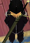 Claymore (Gold Blade) Sheathed.png