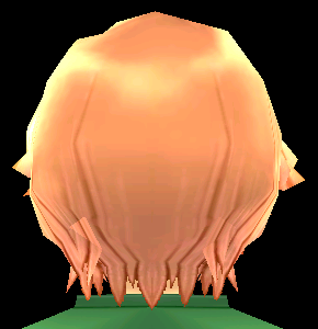 Equipped  Hamlet's Scarred Wig viewed from the back
