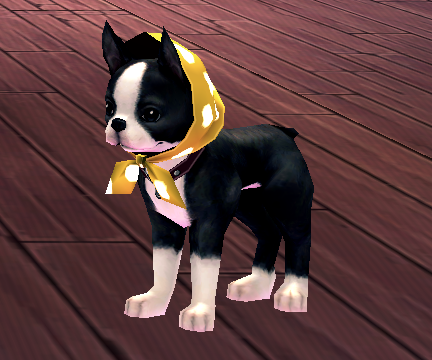 Boston Terrier 2.png