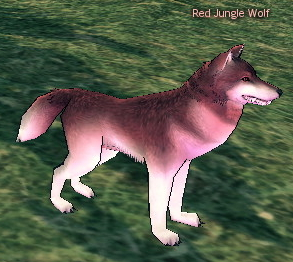 File:Red Jungle Wolf.jpg