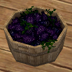 Grape Bucket in Homestead Housing.png